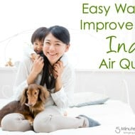 Easy Ways to Improve Your Indoor Air Quality