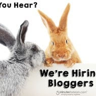 We're Hiring Bloggers Who Take Great Photos – Join Our Blogging Team