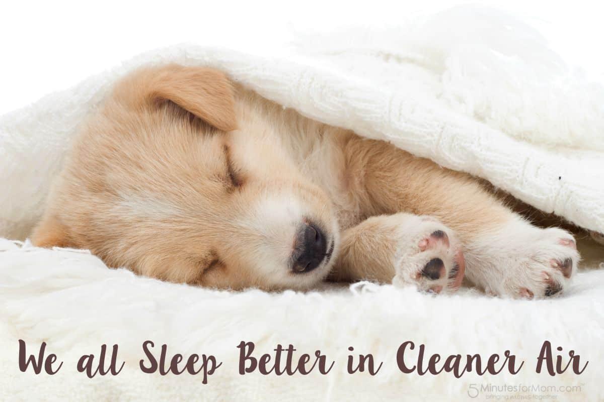 Sleep Better in Cleaner Air