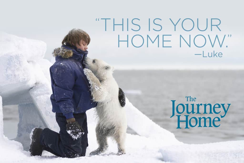 TheJourneyHome-Image1