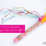 DIY Little Charmers Magic Wand Craft