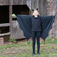 Wordless Wednesday – Bat Costume