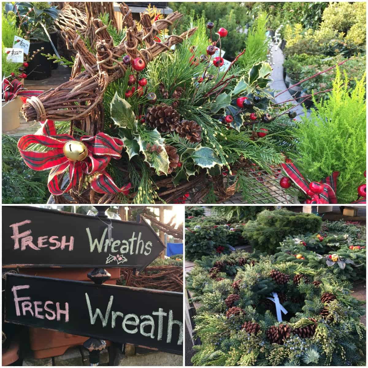 Fresh Wreaths at Art Knapp