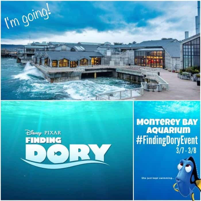 Finding Dory Press Event in Monterery