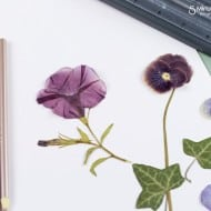Pressed Flowers and Leaves – Craft Ideas for Kids #IdeasAreAllAround