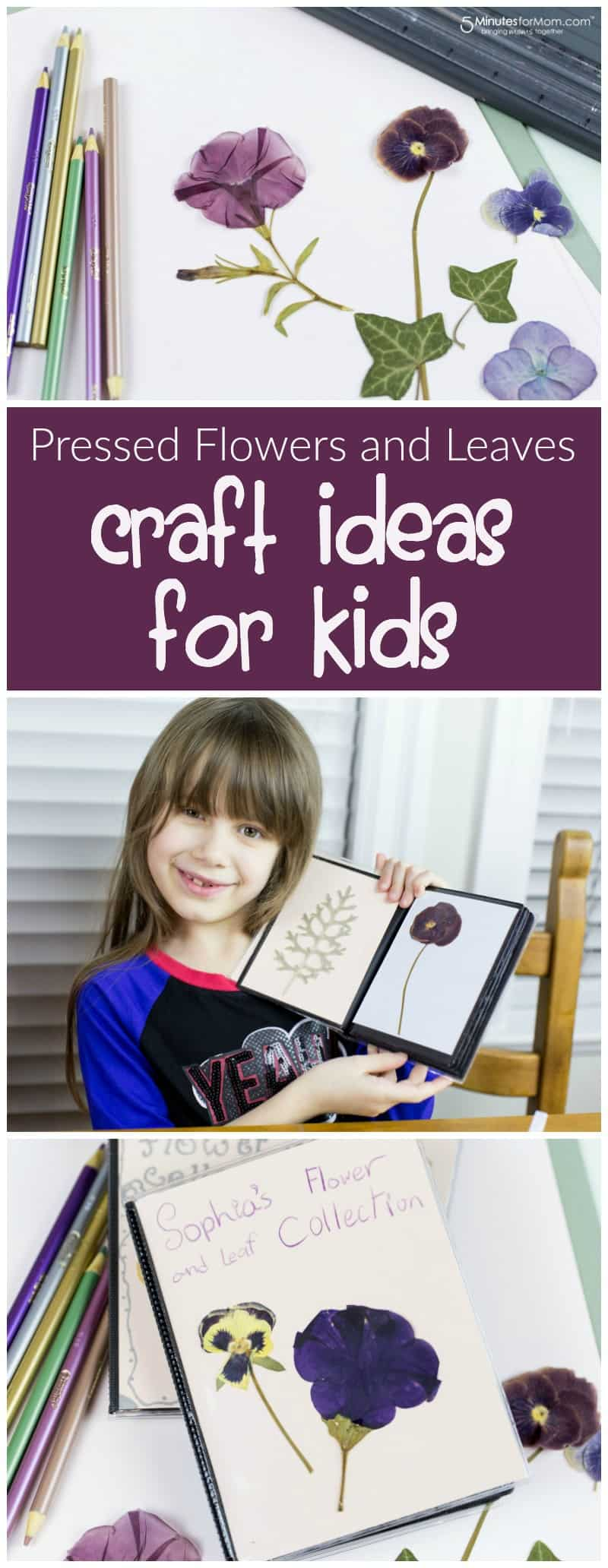 Pressed flowers and leaves - Craft ideas for Kids