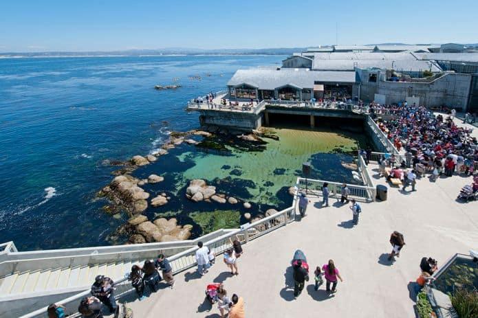 The Great Tide Pool at Monterey Bay Aquarium. ©Monterey Bay Aquarium