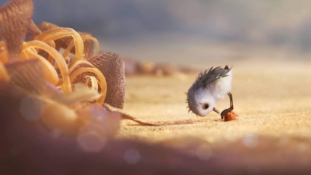 """Piper Crabs - Pixar Animation Studios short """"Piper"""""""