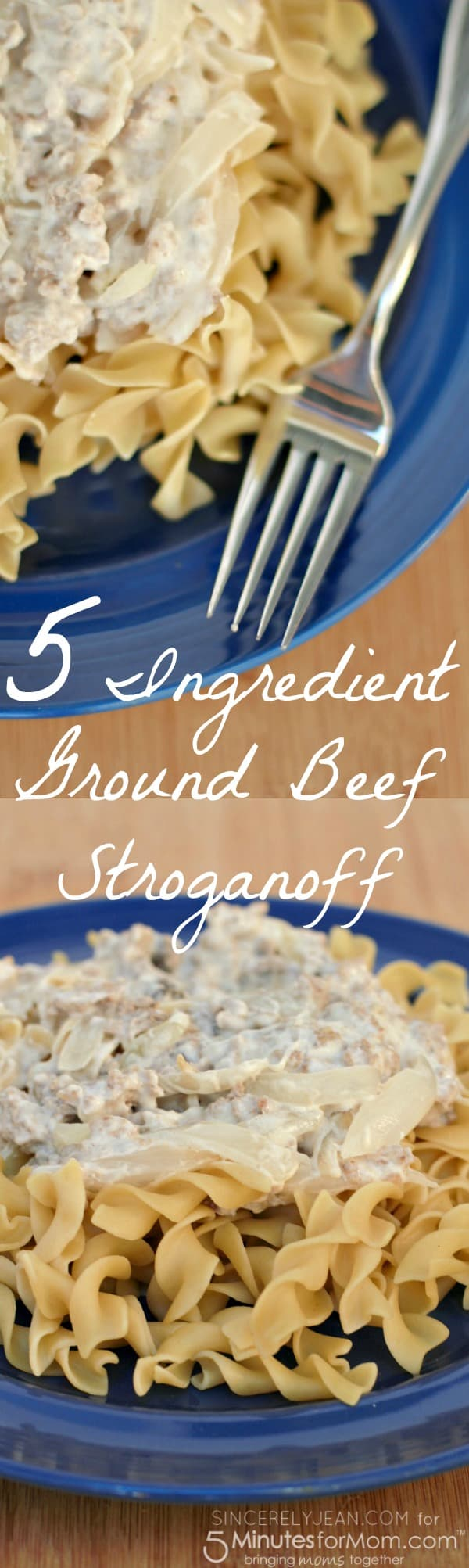 5 Ingredient Ground Beef Stroganoff