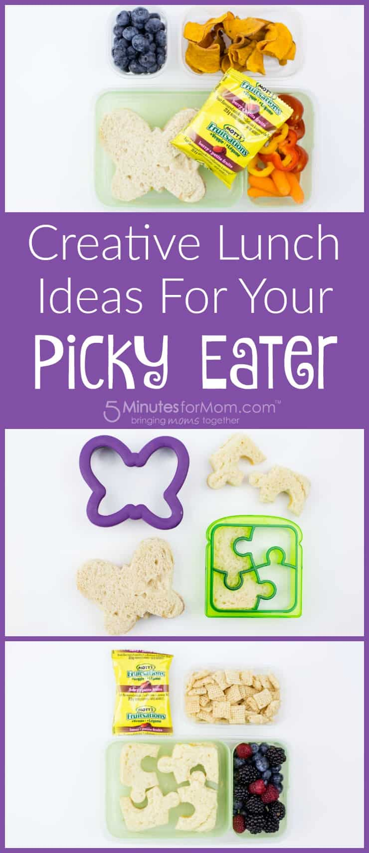 Creative Lunch Ideas for your Picky Eater