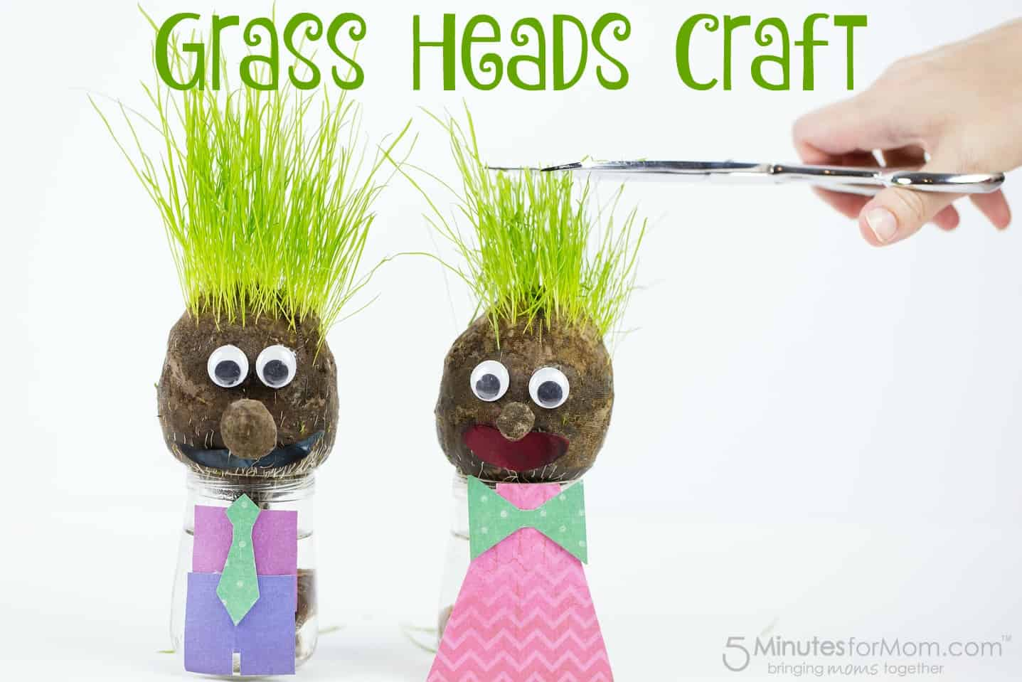 Grass Heads Craft for Kids