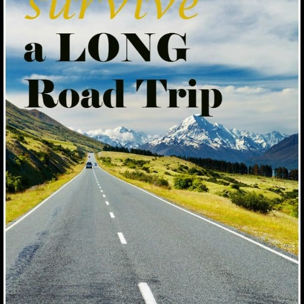 How to Survive a LONG Road Trip