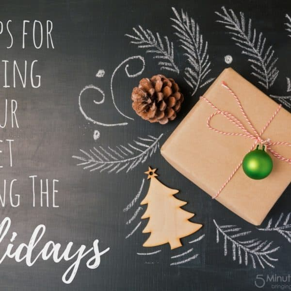 10 Tips for Sticking to Your Budget during the Holidays