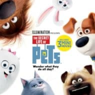 Get Ready for #TheSecretLifeofPets on DVD and Blu-Ray #PetsPack