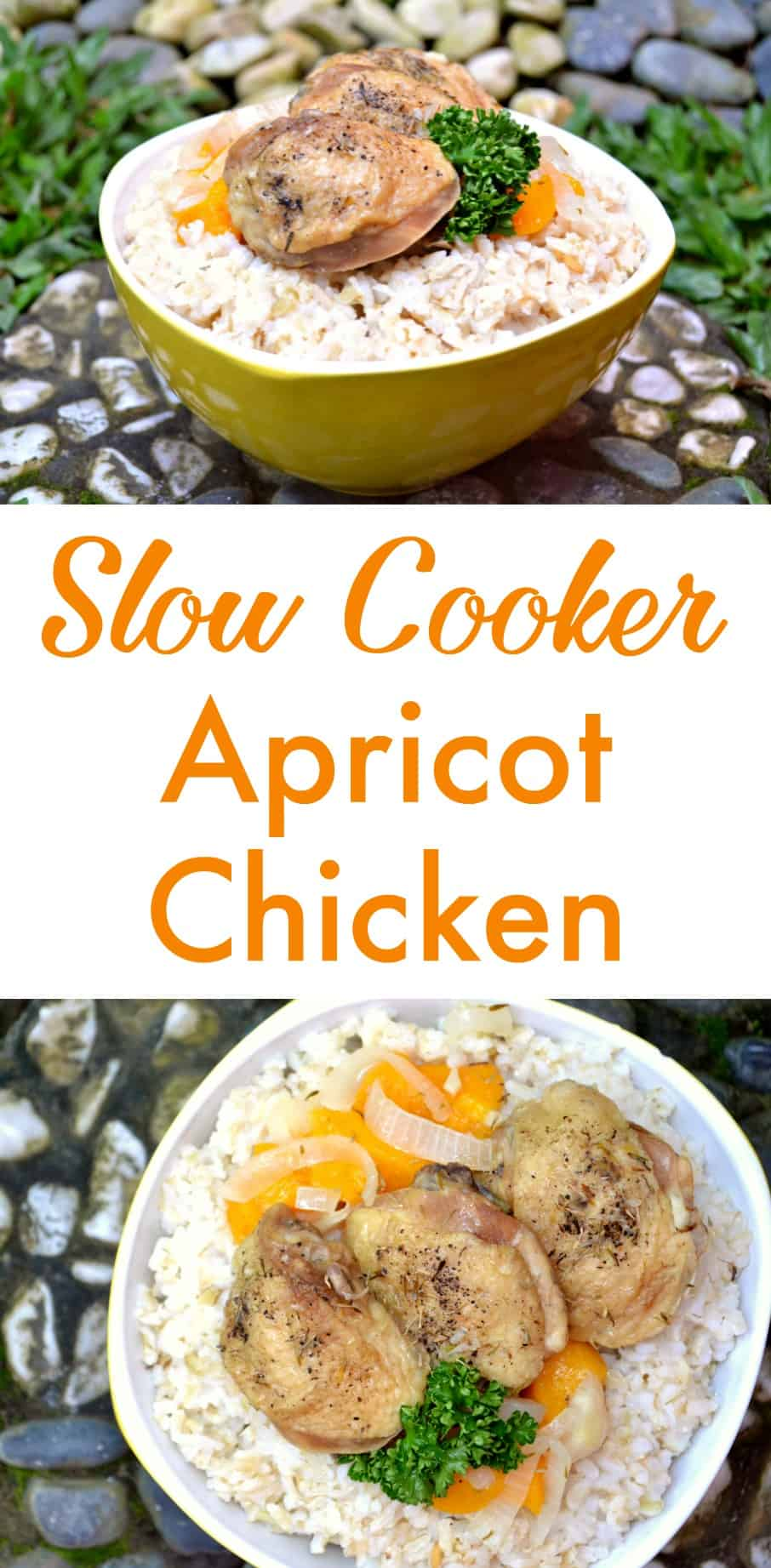 slow-cooker-apricot-chicken
