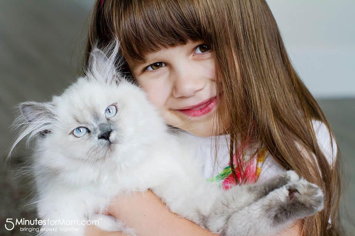 show pet love