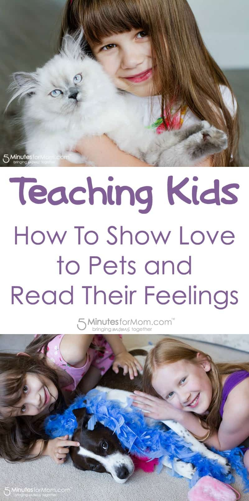 Teaching kids how to show love to pets and read their feelings