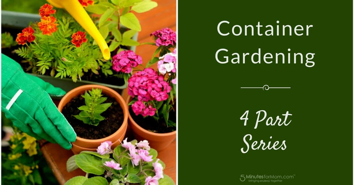Container Gardening Series
