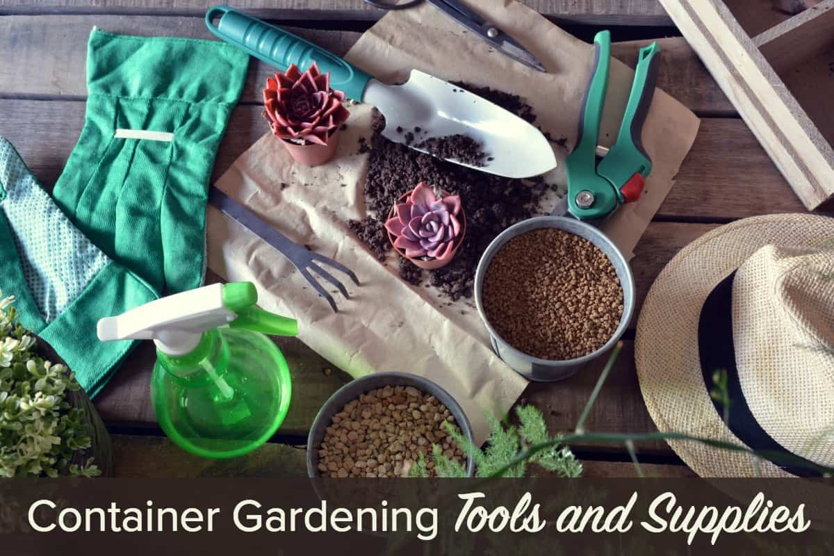 Container Gardening Tools and Supplies