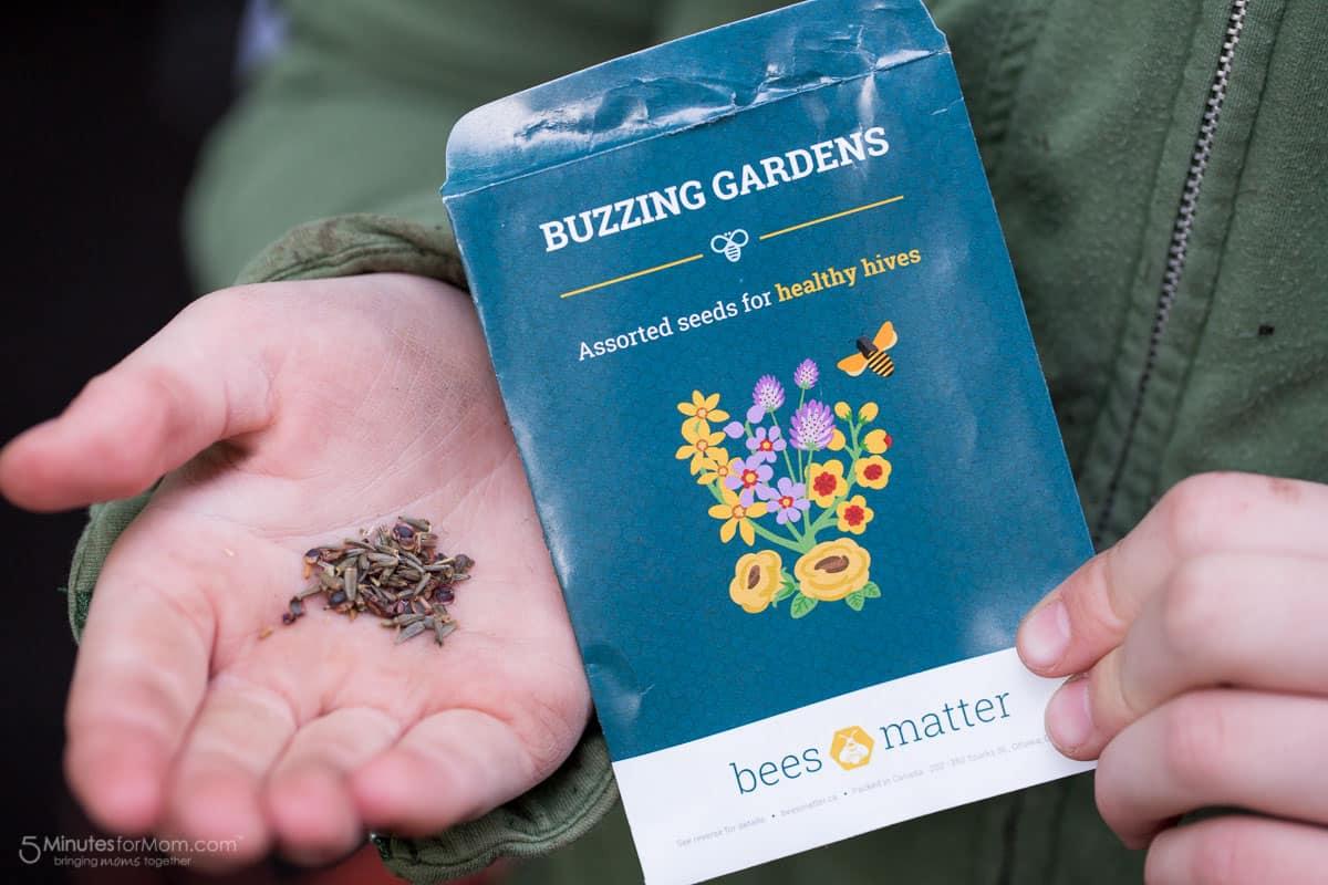 Buzzing Garden - Bees Matter