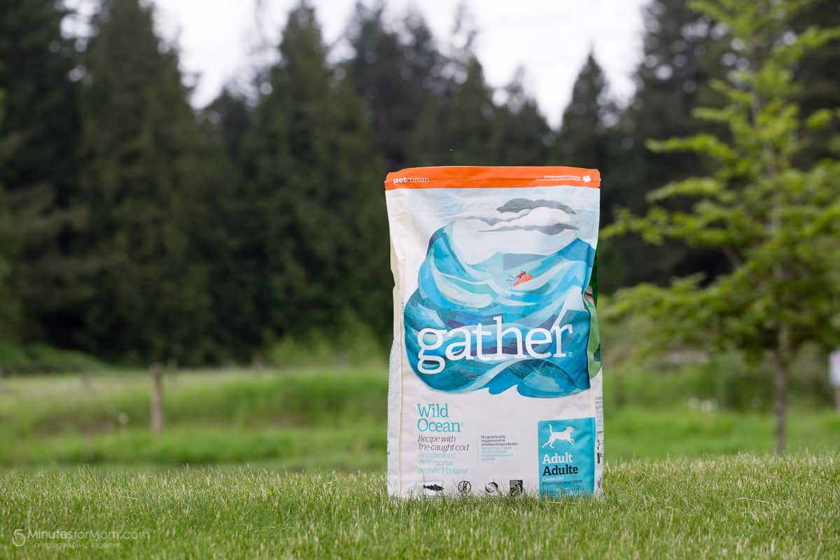 Gather Organic Pet Food
