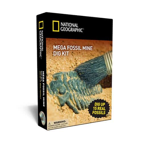 Gift Ideas for Kids - Mega Fossil Mine