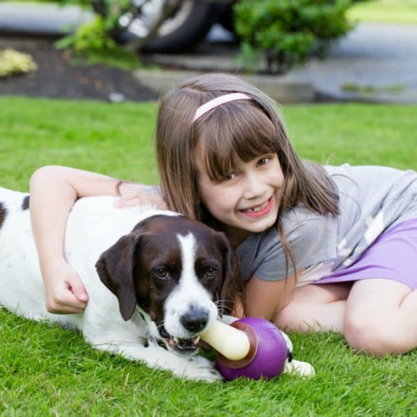 Adopting A Dog Will Bless Your Family… If You Answer These Questions First
