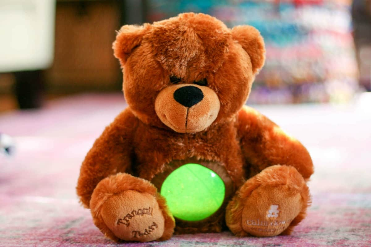 Calm Down Companion - Tranquil Teddy