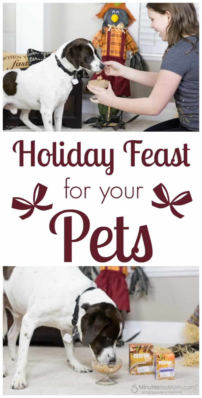 Holiday Feast for your Pets