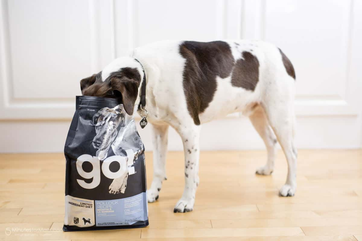 Petcurean GO Pet Food Coupon Code