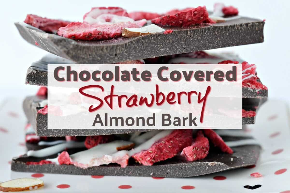 Easy chocolate covered strawberry bark recipe
