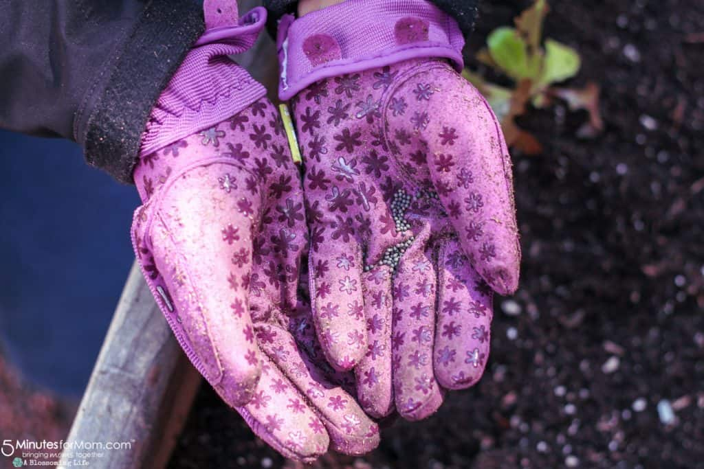Spring Gardening Tips - Getting Your Garden Ready For Spring