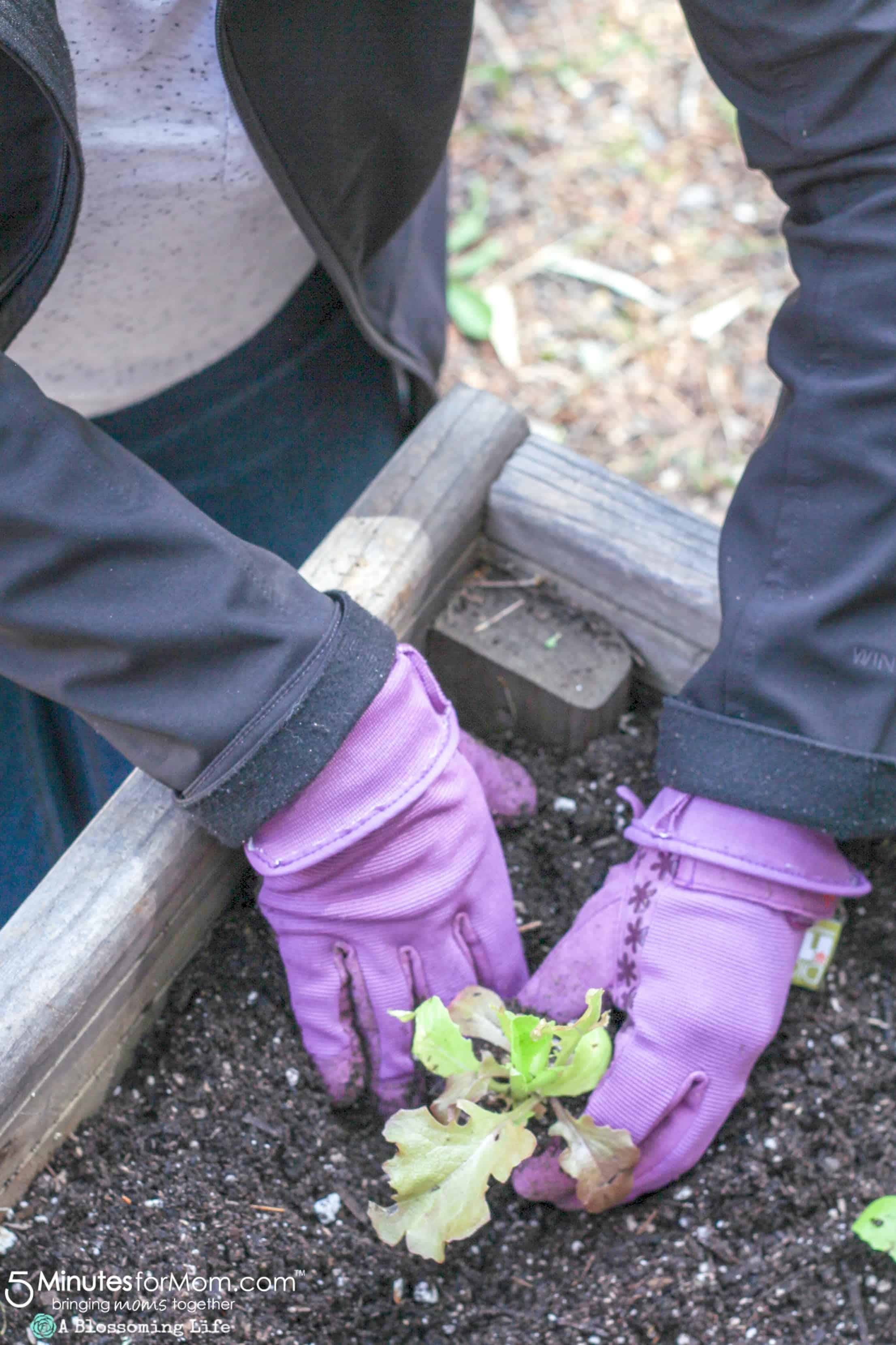 Spring Gardening Tips - Dig It Gardening Gloves