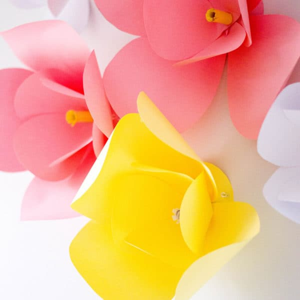 DIY Paper Flowers – The Easiest DIY Wall Decor