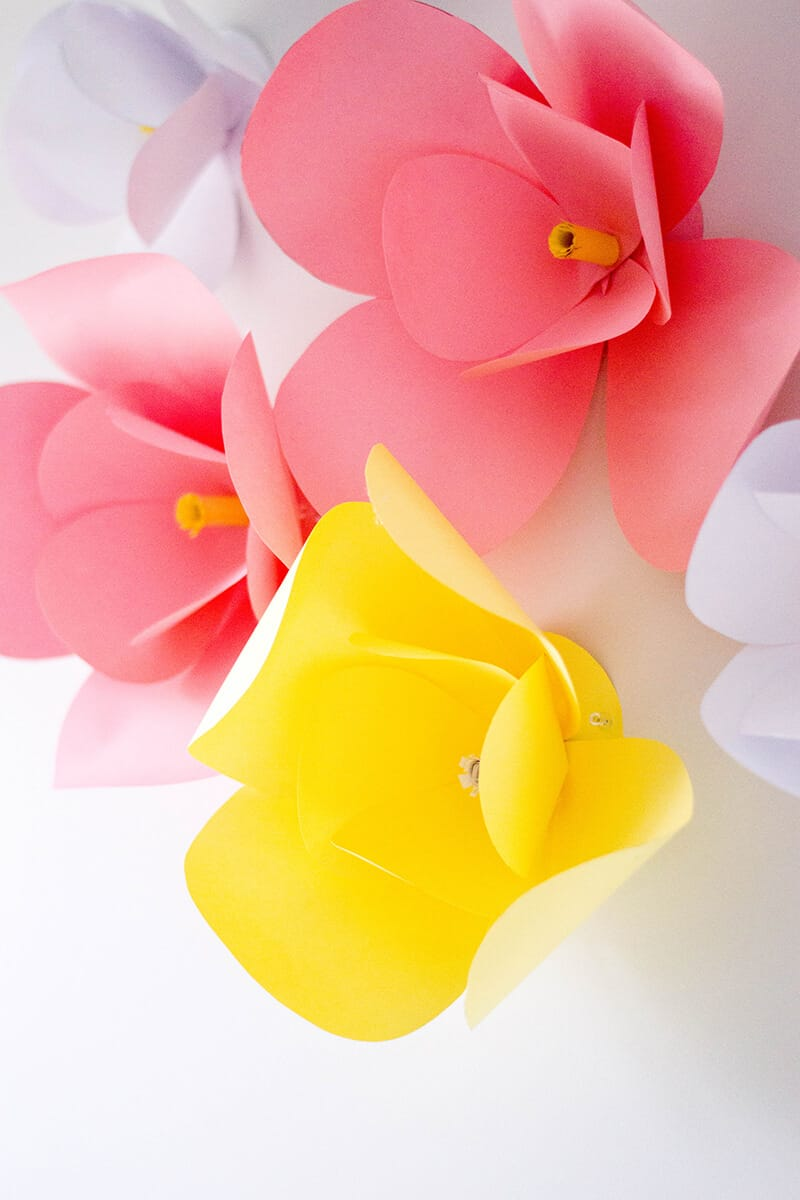 Hanging DIY paper flowers.