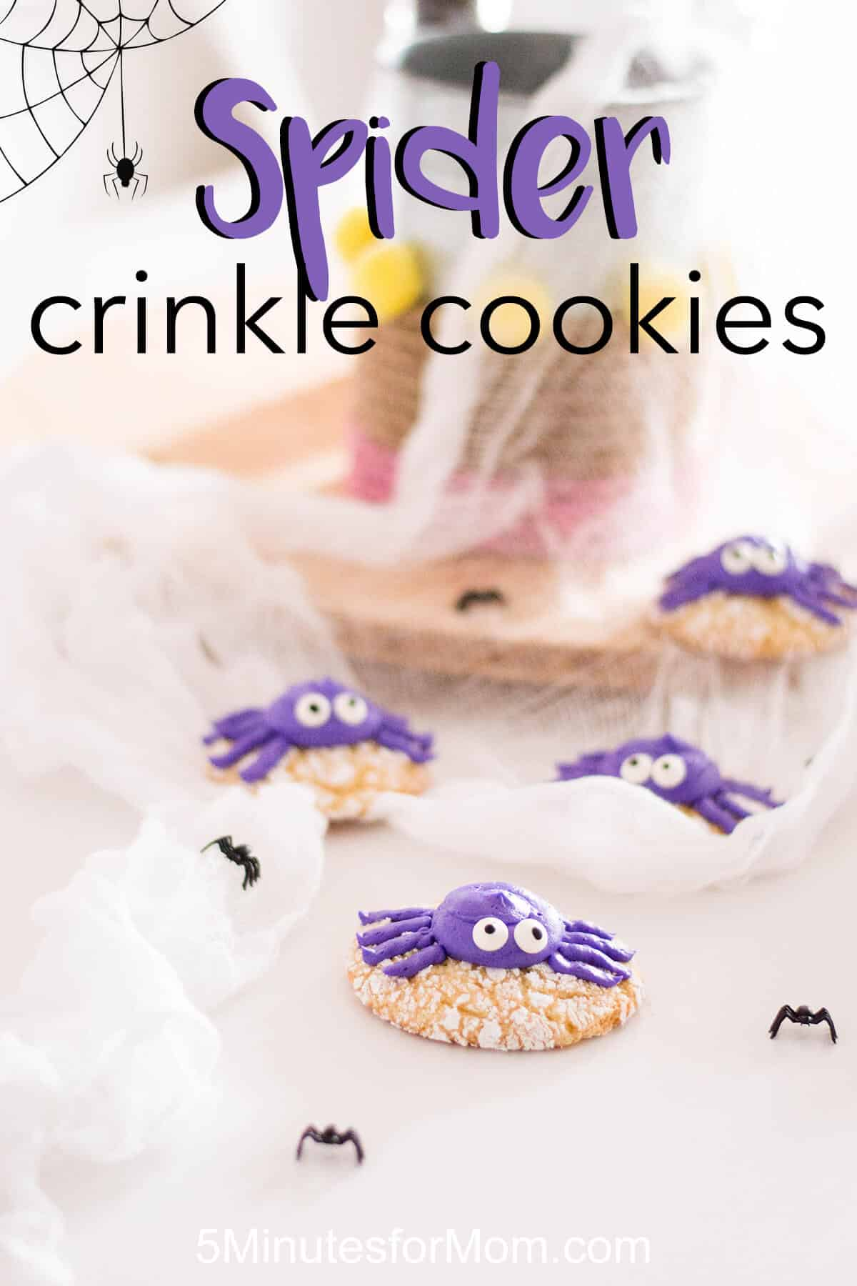 Spider Crinkle Cookies Recipe - Halloween Recipe