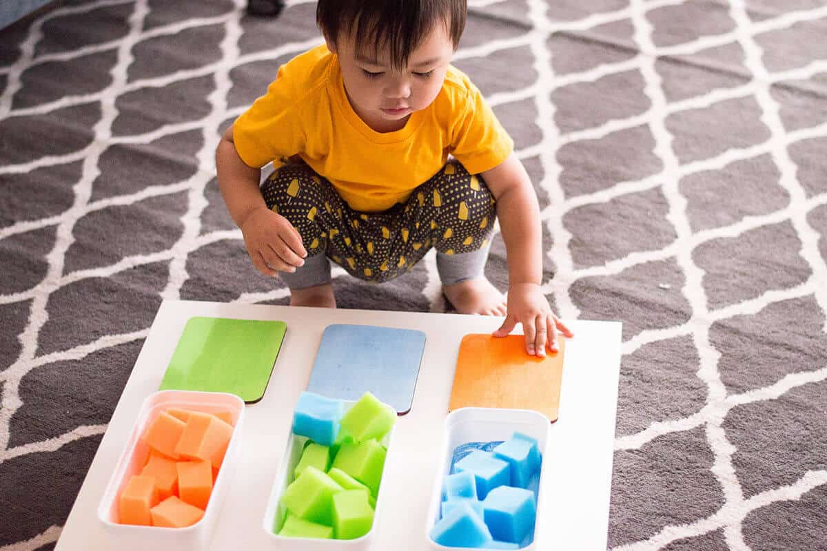 Toddler color recognition activity