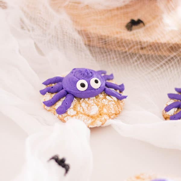 Spider Crinkle Cookies – Tasty Halloween Recipe