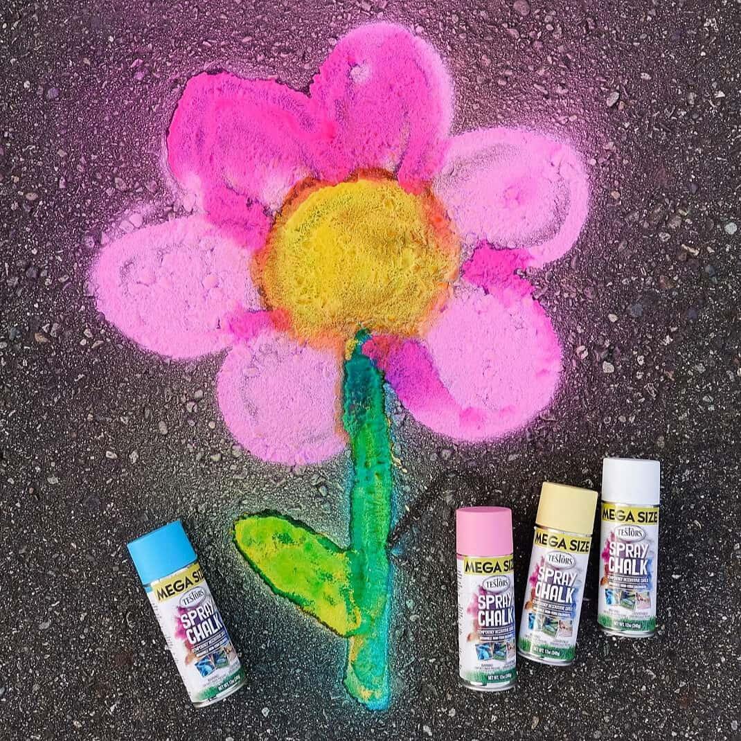 Spray Chalk Flower