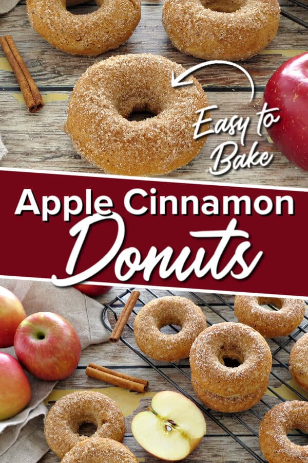 Apple Cinnamon Donuts - Easy to Bake