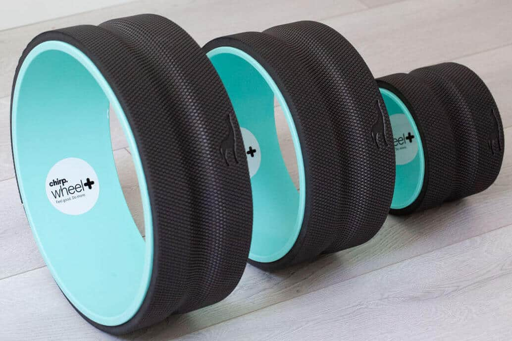 Chirp Wheel - Christmas Gift Ideas for Her