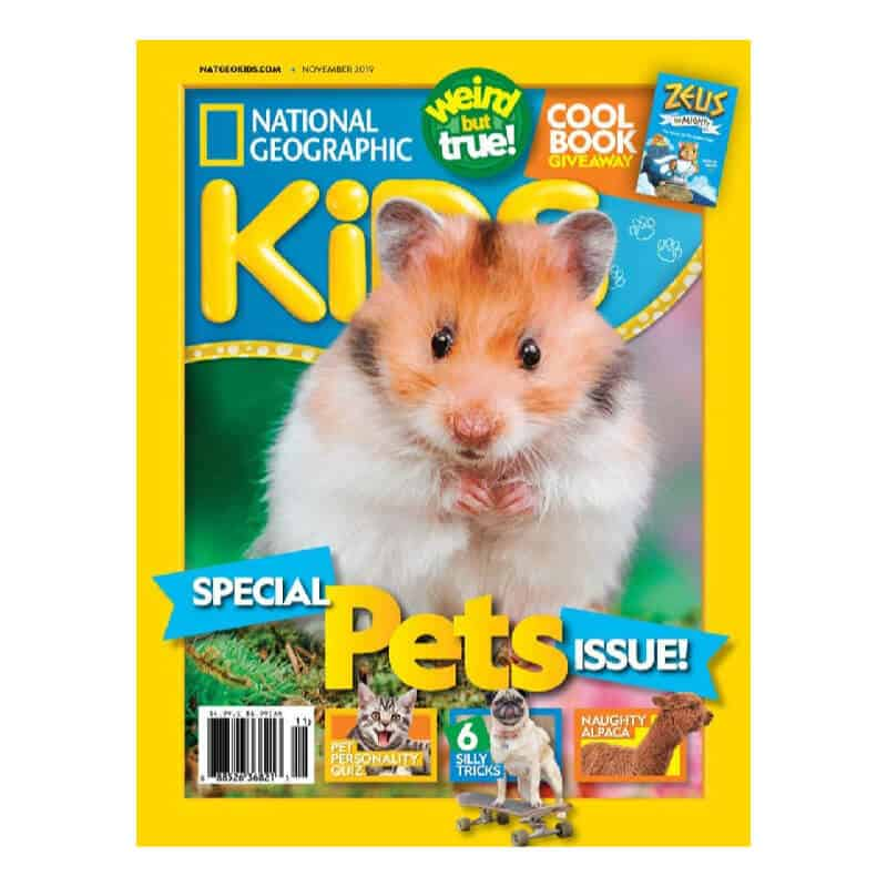 Magazines for Kids - Christmas Gift Ideas