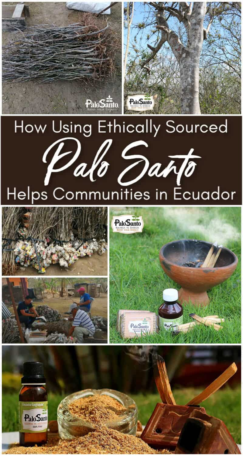 How Using Palo Santo Helps Communities in Ecuador