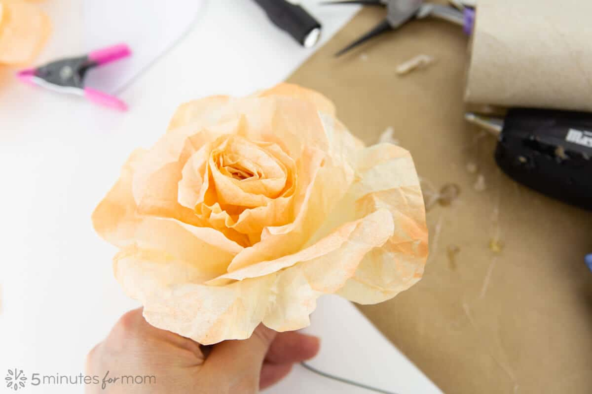 Easy Coffee Filter Rose