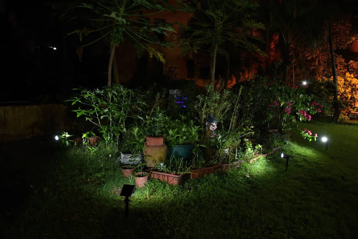 Outdoor Lights in the Garden