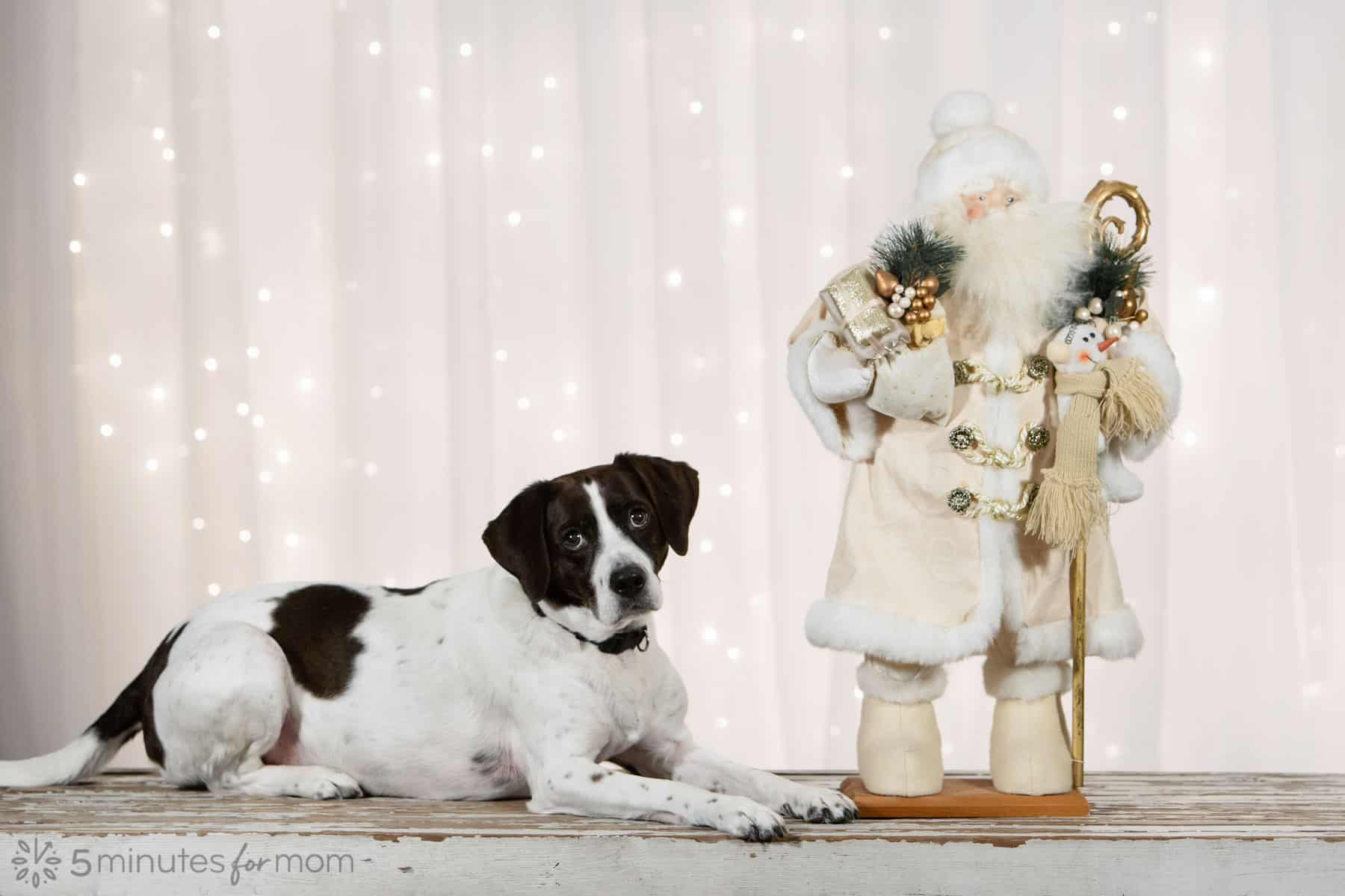 Merry Christmas - AJ with Santa Claus Statue