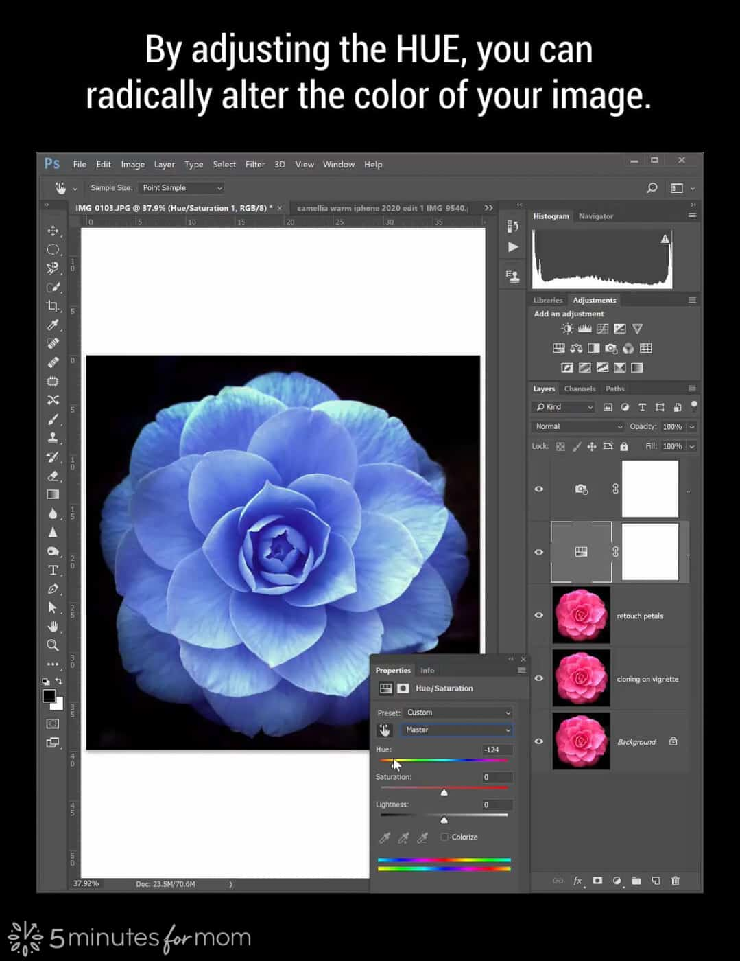 Adjusting Hue in Photoshop