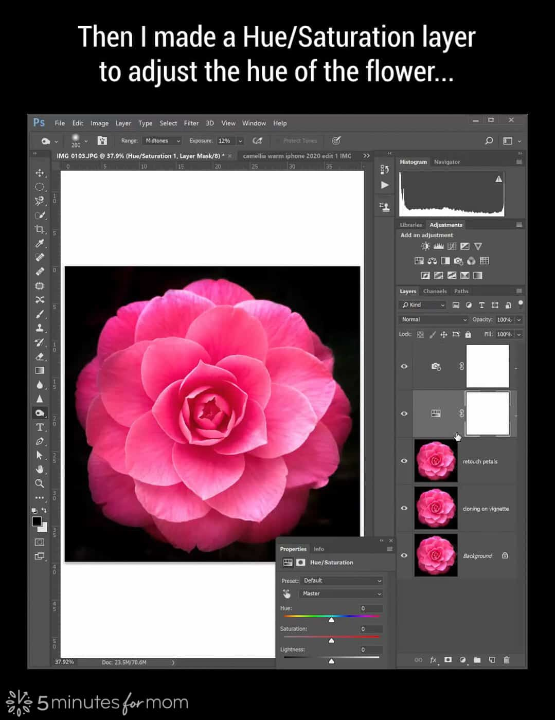 Hue Saturation adjustment layer in Photoshop
