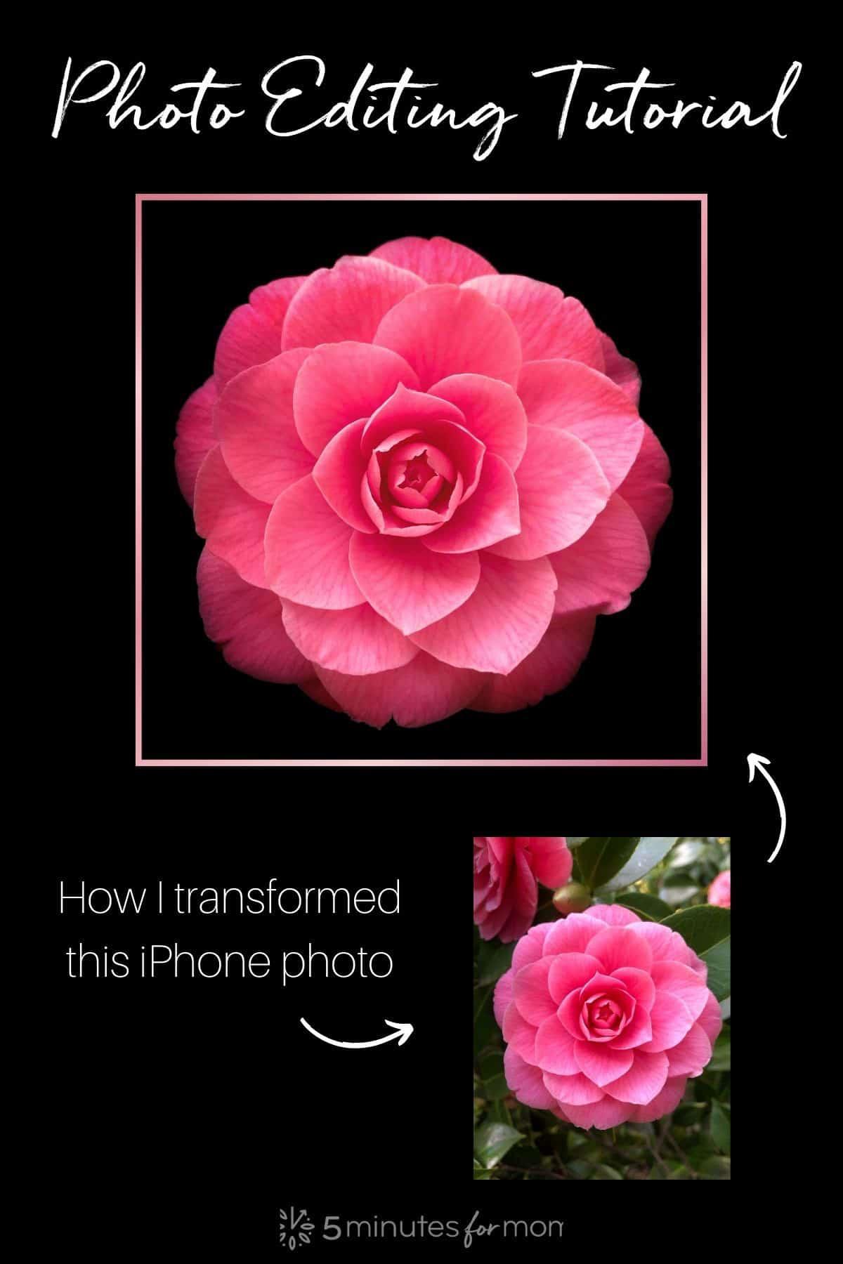 Photo editing tutorial using vignette tool on Snapseed