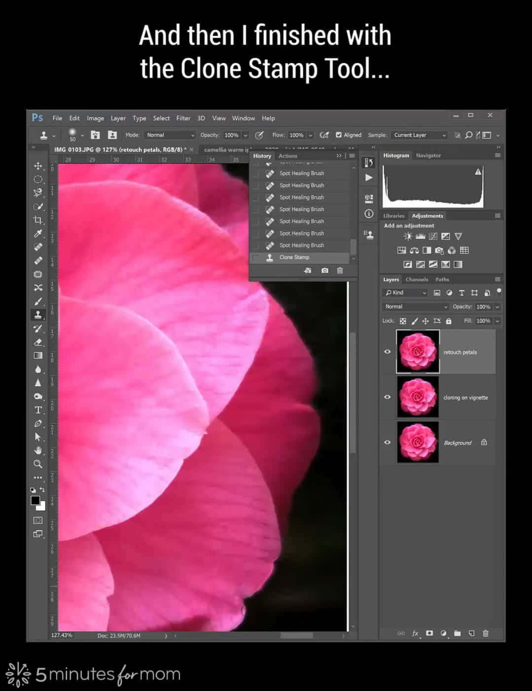 add a new layer for retouching petals in Photoshop